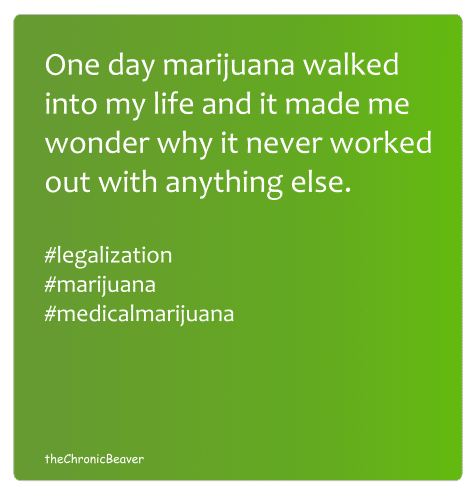 Marijuana walked into my life meme