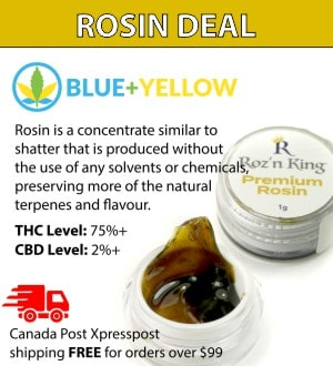 Blue+Yellow - mail order dispensary rosin deal