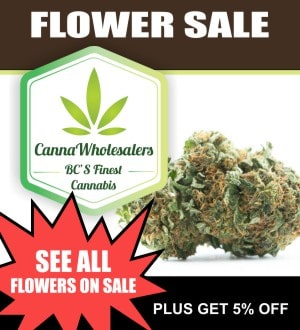 Online Dispensaries Canada Coupons & Deals - The Chronic Beaver