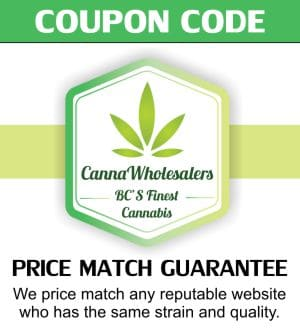 cannawholesalers-wholesale-dispensary-coupon-code-budhub5