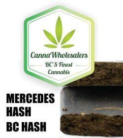 cannawholesalers-mercedes-cheap-hash-deal-99-dollar-ounces