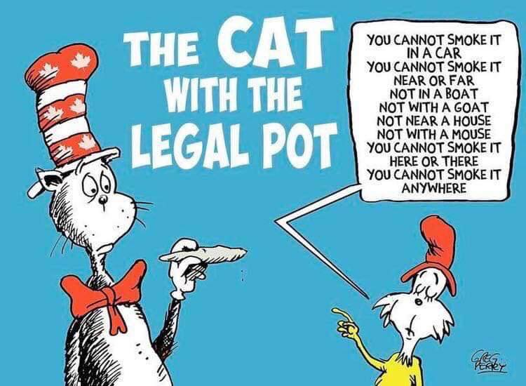 pot-meme-the-cat-always-nose