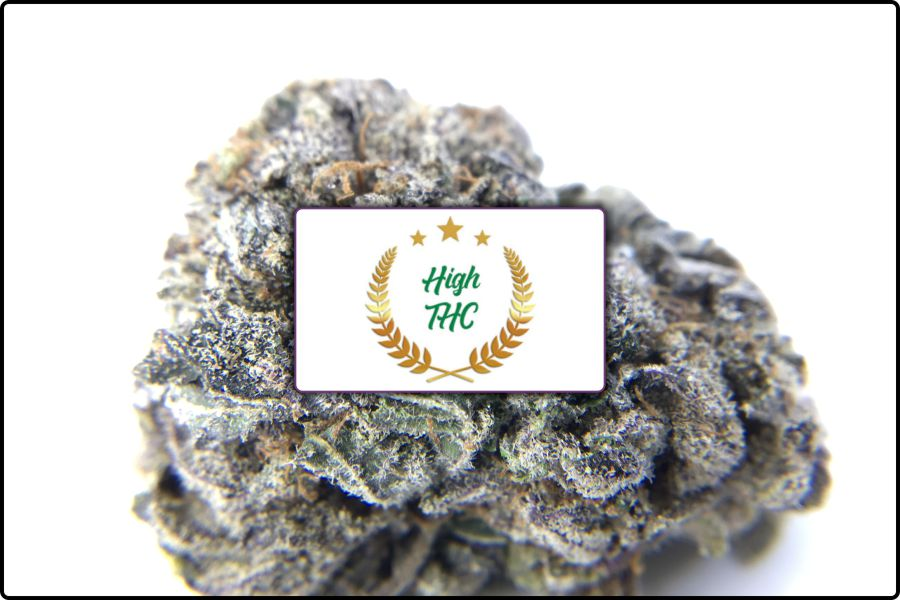 High THC Review – Unboxing with Strain & Shatter Reviews
