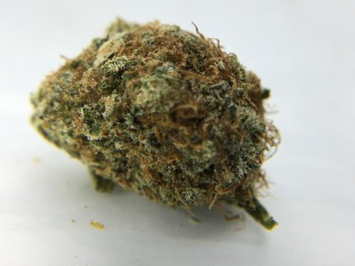 dark-side-of-the-moon-strain-review-image-2
