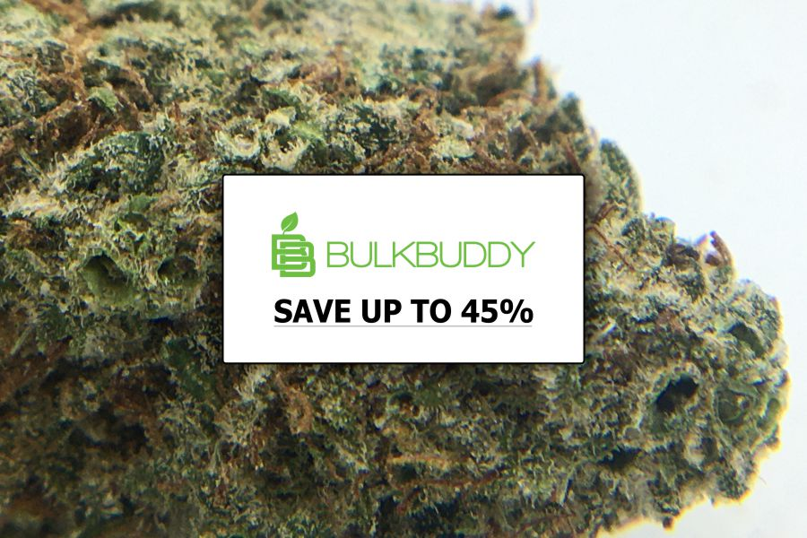 Bulk Buddy Review, the Best $99 Ounces Canada
