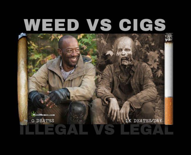 Weed Memes, Weed vs Cigs