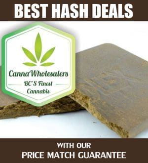 cannaWholesalers-cheap-hash-deals-canada