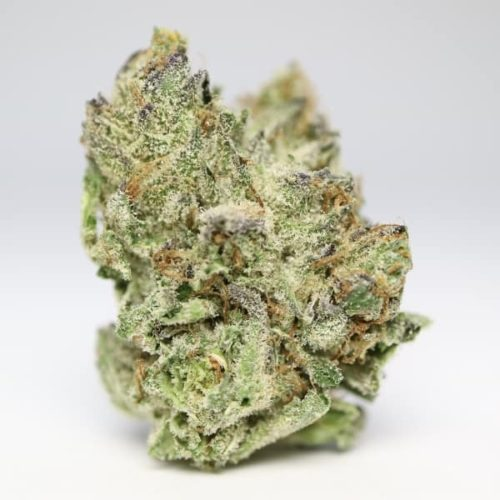 gorilla-glue-no4-buds2go-1