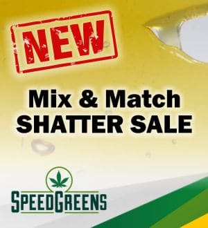 8 grams of AAAA Shatter