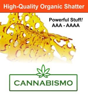 cannabismo-shatter