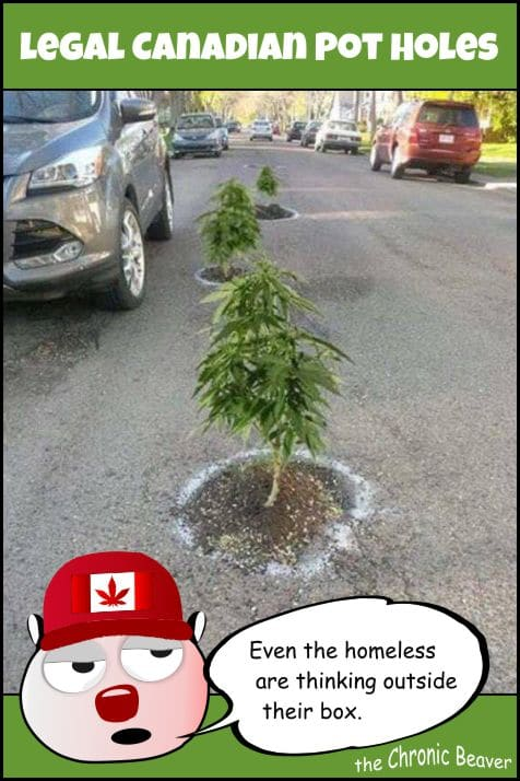 weed-comic-meme-canadian-legal-pot-holes