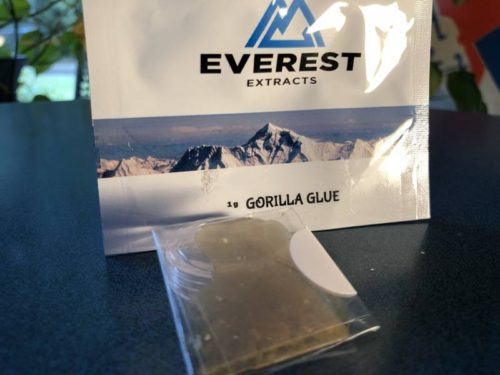 speed-greens-shatter-review-gorilla-glue-strain