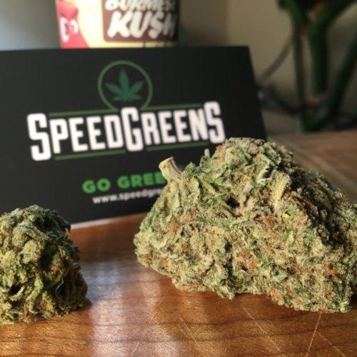 speedgreens-tcb-burmese-kush-gallery-4