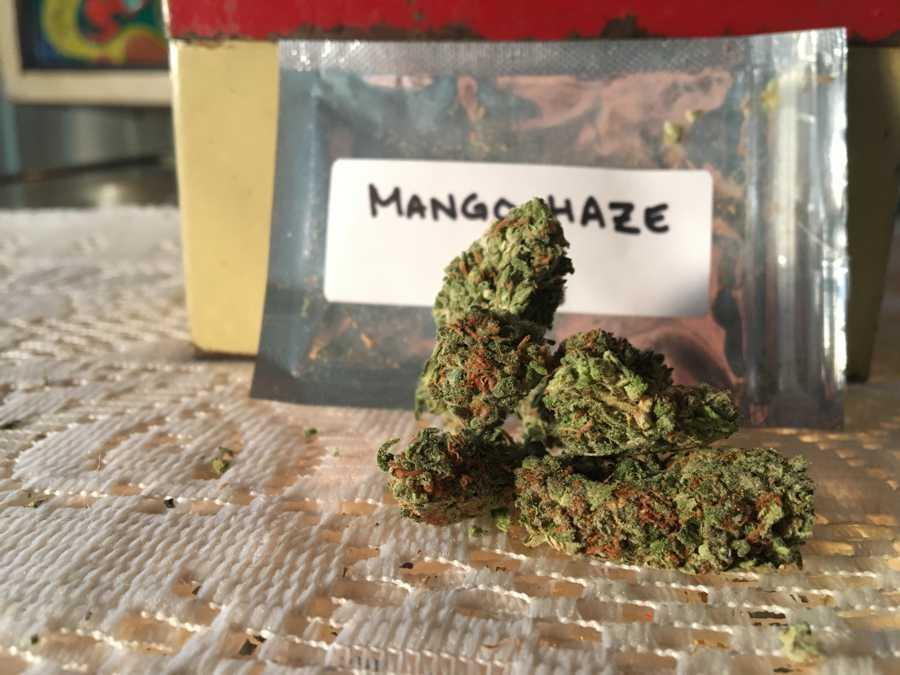 GetKush Mango Haze Strain