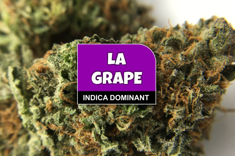 LA Grape Strain Review & Ratings