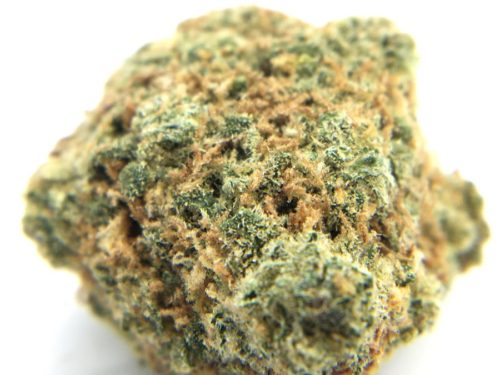 papaya-cake-strain-review-the-high-club-image-1