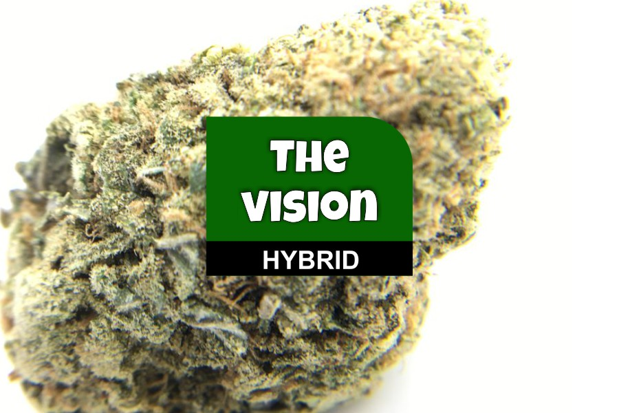 The Vision Strain Review: Green Society
