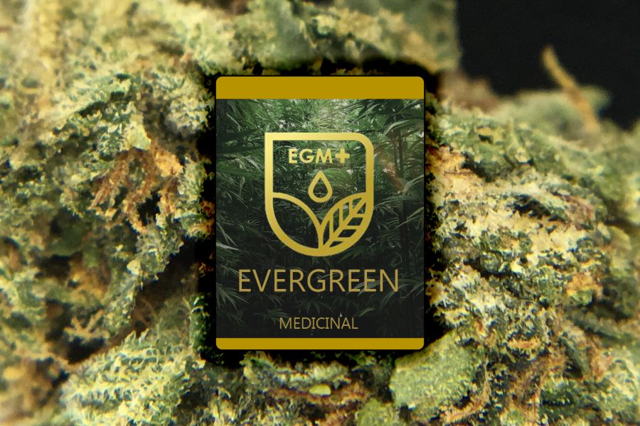 Evergreen Medicinal (EGM) Dispensary Review