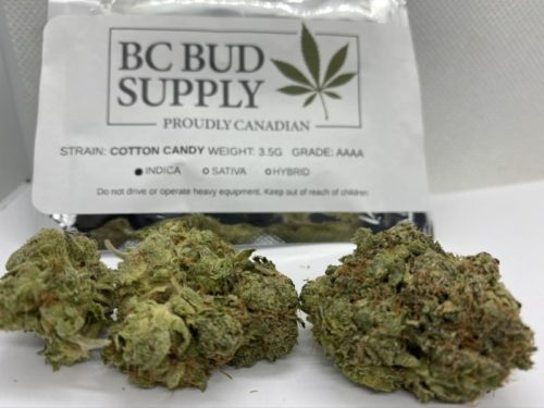 cotton-candy-strain-review