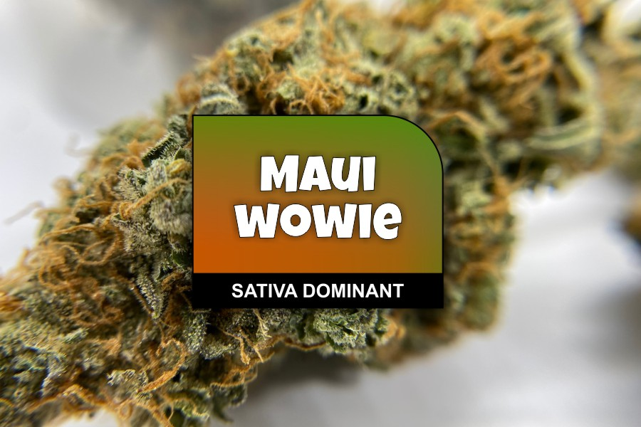 Maui Wowie Strain Review with Ratings